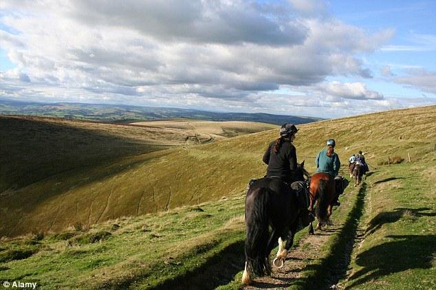 Radnor Forest Trail, Powys