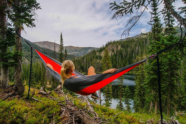 Hammock wilderness