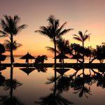 Bali Palms