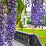 Salzburg Park
