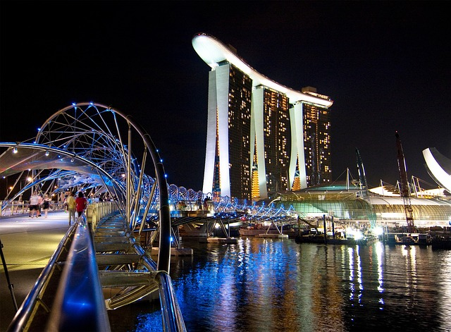 Singapore's great food